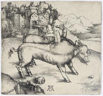 Durer's Monstrous Pig